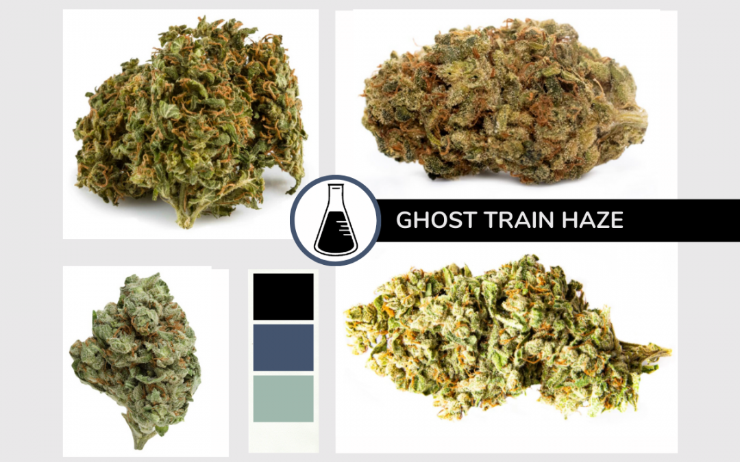 Ghost Train Haze Dried Flower Products